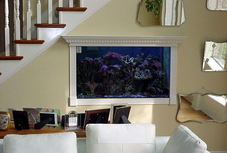Дизайн маленького аквариума